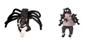 Disfraz de araña para bebé y perro