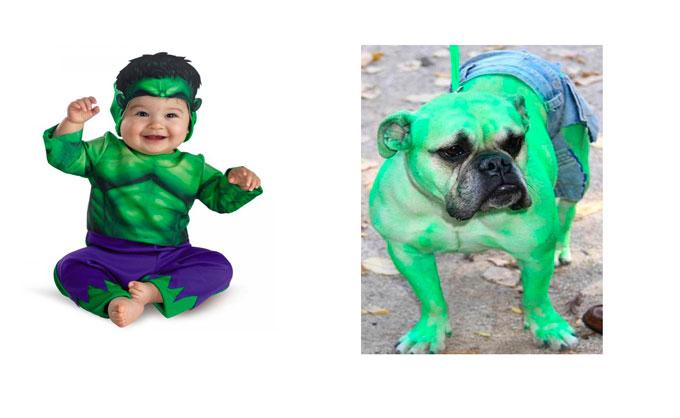 Disfraz de Hulk para bebé y perro