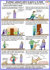 Recomendaciones educación canina y bebés 2