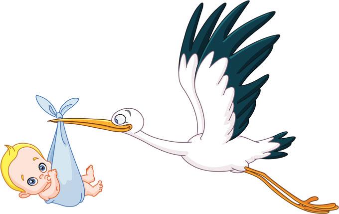 La cigüeña trae un bebé