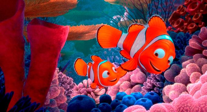 los papás buscamos cole como el papá del Nemo